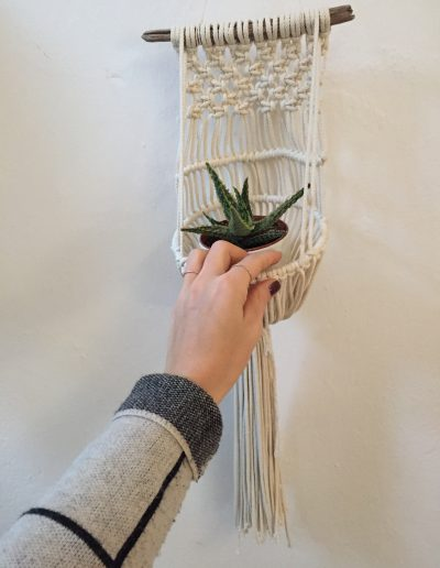 Hand & Modern Wallplanter